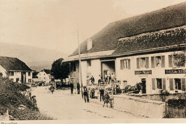 Image Raisin 1900